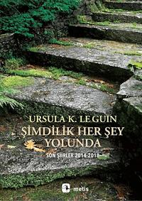 Şimdilik Her Şey Yolunda / Son Şiirler 2014-2018